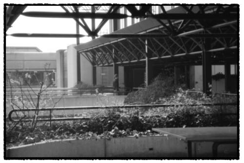 EPFL 9
