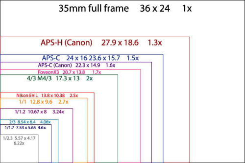 On voit ici que c'est la plus petite taille de capteur existant dans un compact (image tirée du blog http://ricehigh.blogspot.com/2011/08/sensor-sizes-re-visited-including.html)