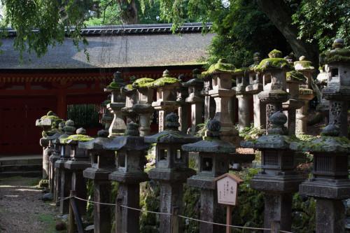 Kyoto-19