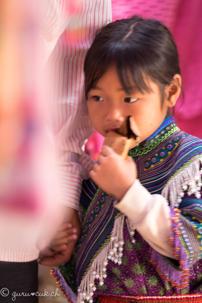 Hmong Fleur (ou Bariolé)