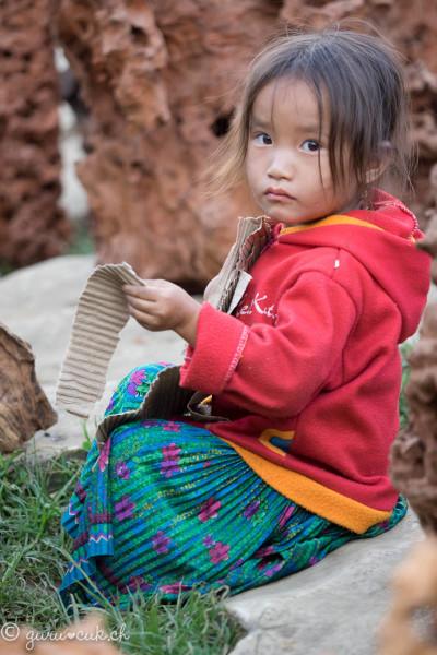 Hmong Noir 06