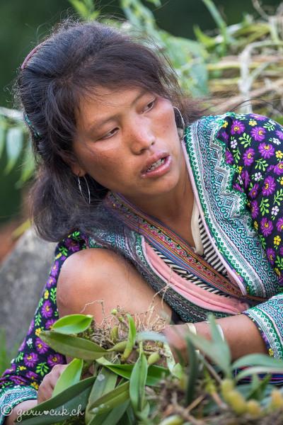Hmong Noir 07