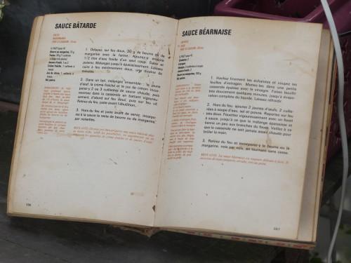 là, pour la page de la béarnaise, les feuilles d'estragon collées façon herbier par la décoction de vinaigre, c'est de moi, mais il est maculé sur de très nombreuses autres pages.